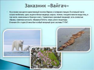 На острове находится единственный поселок Варнек и полярная станция. В осталь