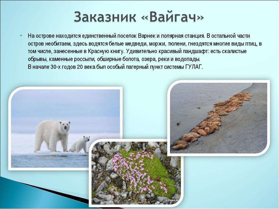 На острове находится единственный поселок Варнек и полярная станция. В осталь...