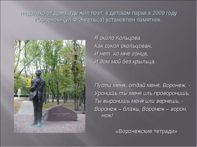 Недалеко от дома, где жил поэт, в детском парке в 2009 году «Орленок»,(ул.Ф.Э...
