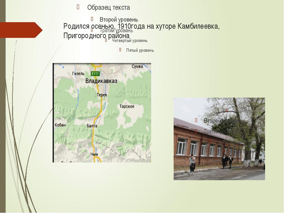 Родился осенью, 1910года на хуторе Камбилеевка, Пригородного района