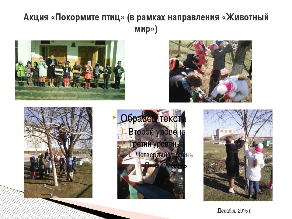 Акция «Покормите птиц» (в рамках направления «Животный мир») Декабрь 2015 г