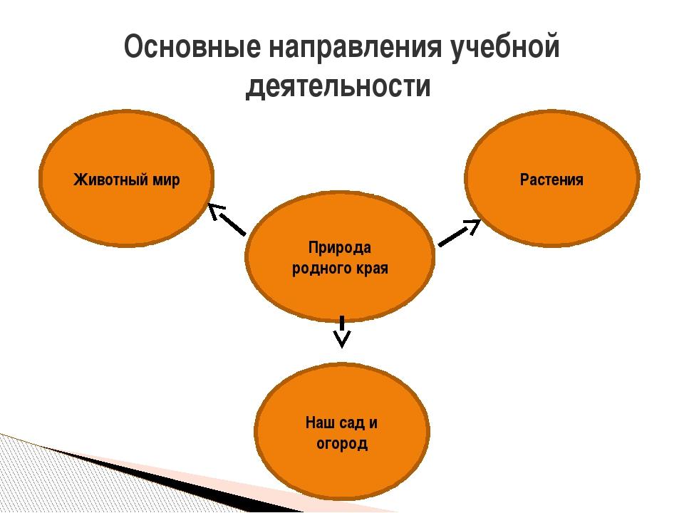 Основные направления учебной деятельности Природа родного края Животный мир Р...