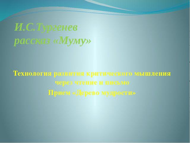 И.С.Тургенев рассказ «Муму» Технология развития критического мышления через ч...