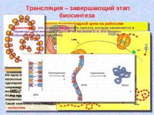 Трансляция – завершающий этап биосинтеза Схема тРНК: А, Б, В, Г – участки ко