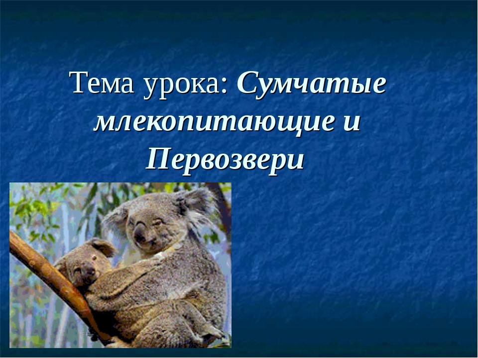 Тема урока: Сумчатые млекопитающие и Первозвери