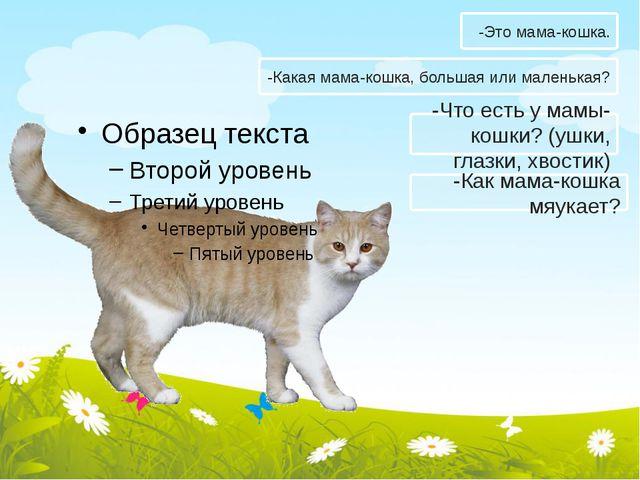 -Какая мама-кошка, большая или маленькая? -Что есть у мамы-кошки? (ушки, глаз...