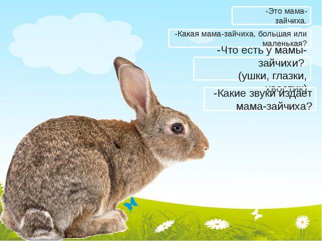 -Какая мама-зайчиха, большая или маленькая? -Что есть у мамы-зайчихи? (ушки,...