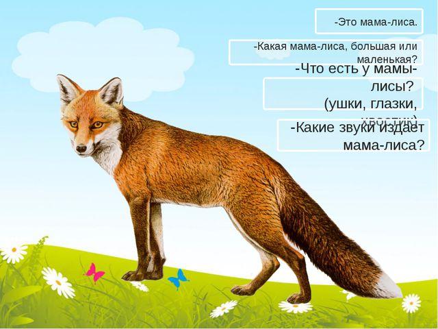 -Какая мама-лиса, большая или маленькая? -Что есть у мамы-лисы? (ушки, глазки...