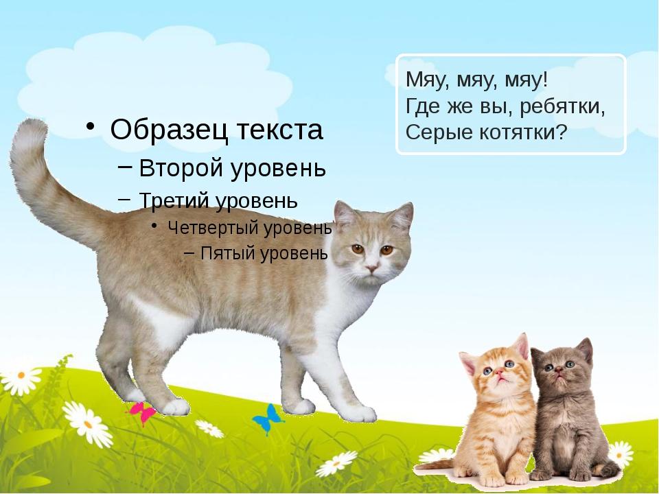 Мяу, мяу, мяу! Где же вы, ребятки, Серые котятки?