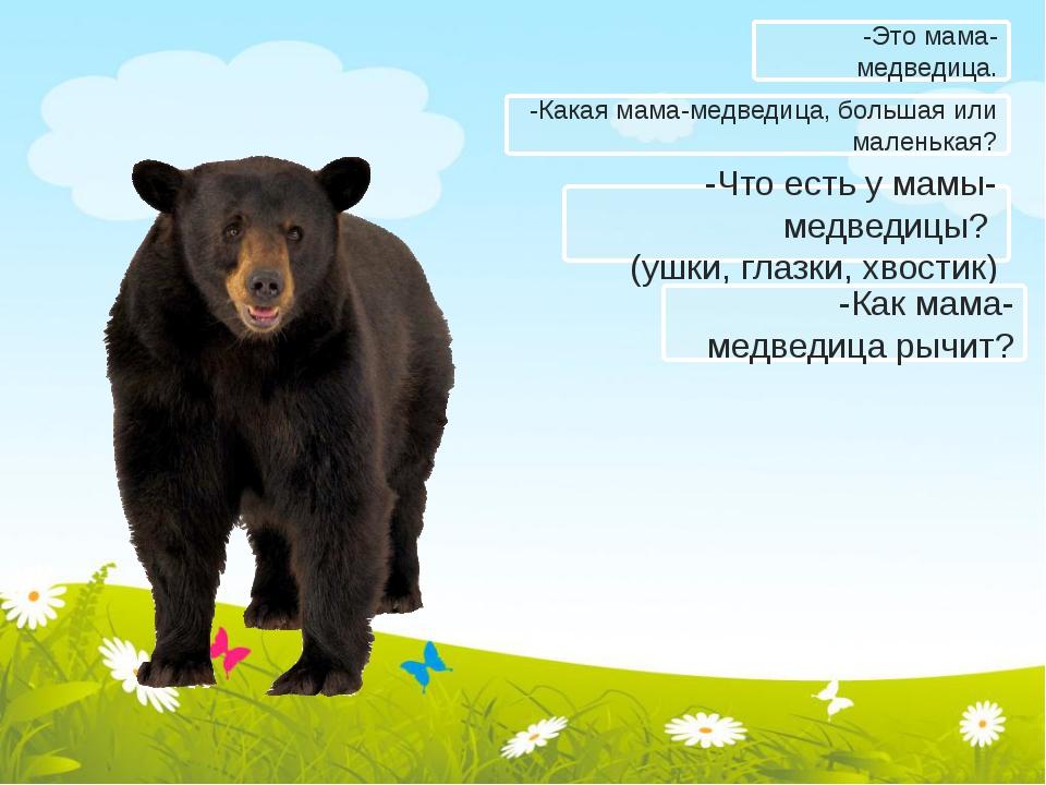 -Какая мама-медведица, большая или маленькая? -Что есть у мамы-медведицы? (уш...