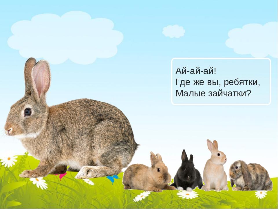 Ай-ай-ай! Где же вы, ребятки, Малые зайчатки?