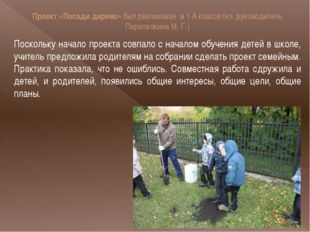 Проект «Посади дерево» был реализован в 1 А классе (кл. руководитель Перепелк