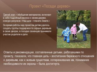 Проект «Посади дерево» Третий этап – обобщение материалов, включает в себя по