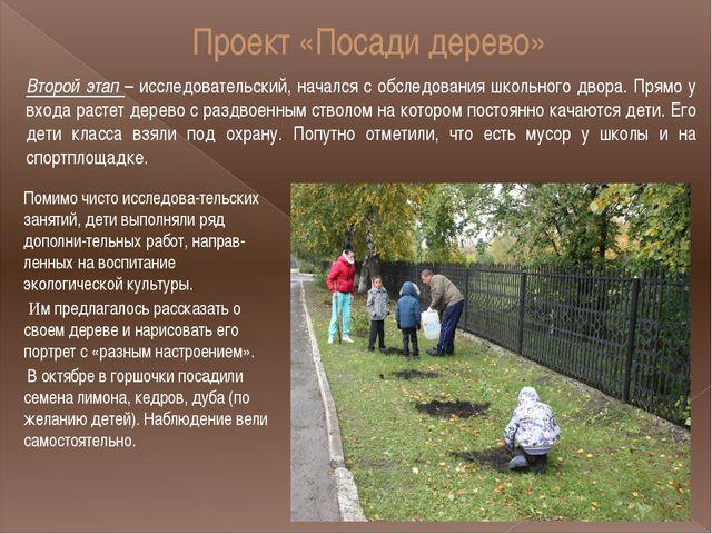 Проект «Посади дерево» Второй этап – исследовательский, начался с обследовани...
