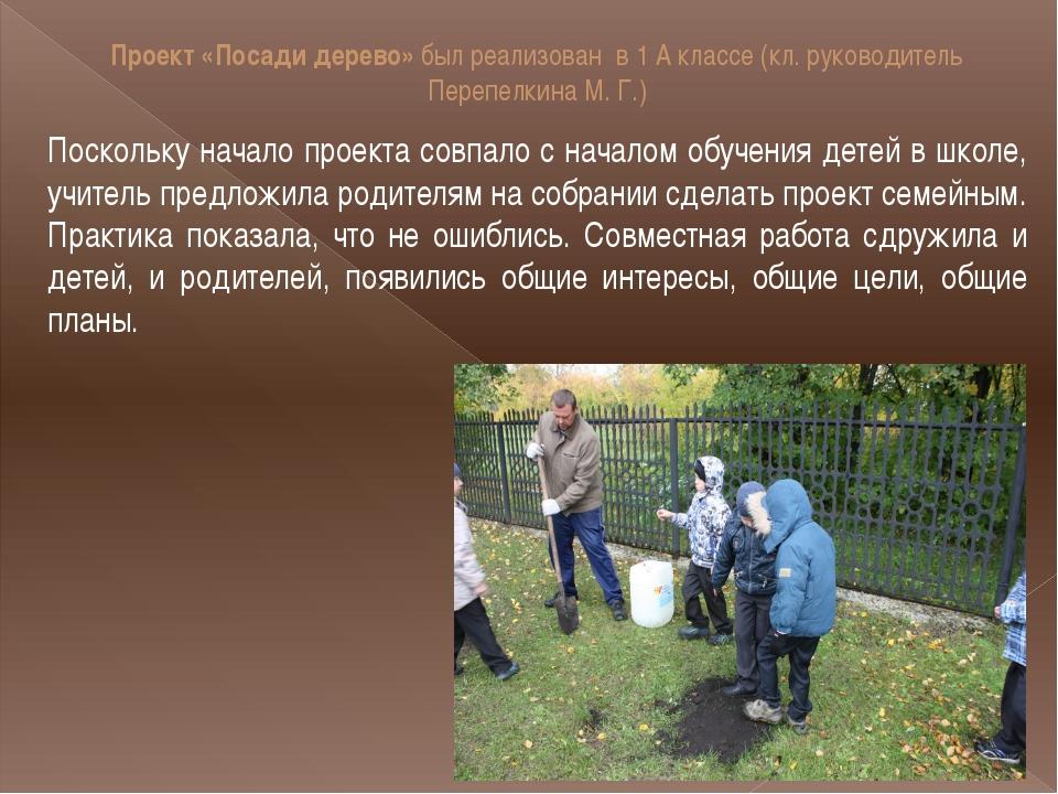 Проект «Посади дерево» был реализован в 1 А классе (кл. руководитель Перепелк...