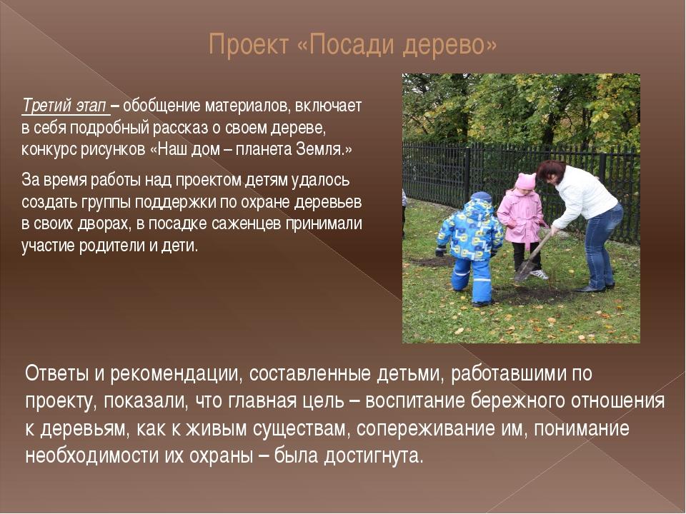 Проект «Посади дерево» Третий этап – обобщение материалов, включает в себя по...