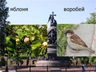 яблоня воробей