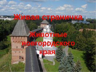 Живая страничка Животные новгородского края
