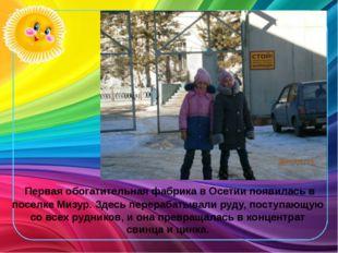 Первая обогатительная фабрика в Осетии появилась в поселке Мизур. Здесь пере