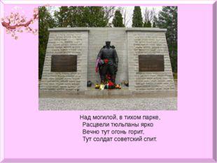 Над могилой, в тихом парке,         Расцвели тюльпаны ярко