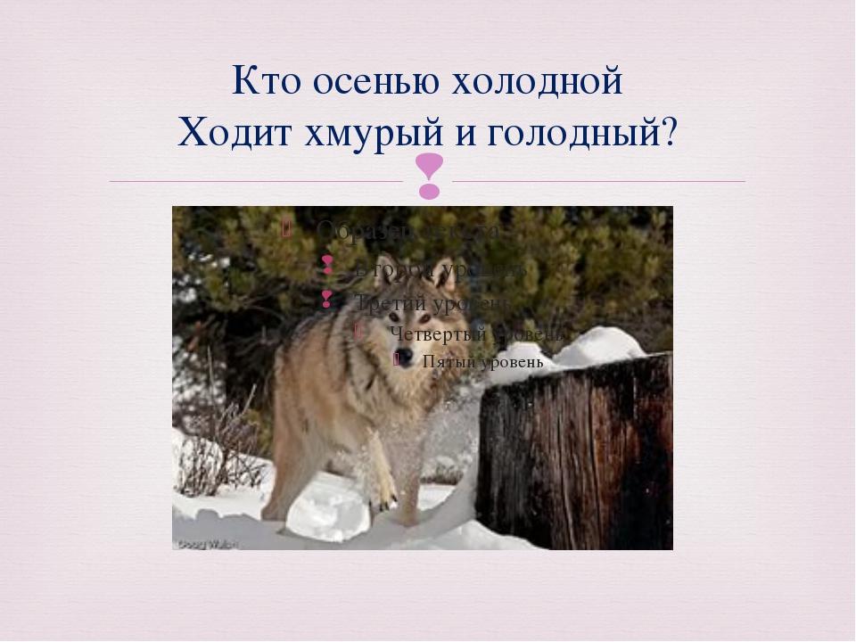 Кто осенью холодной Ходит хмурый и голодный? 