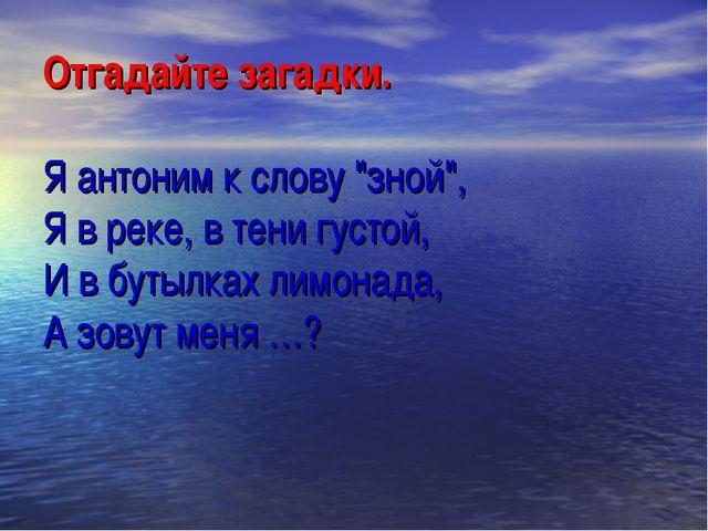 """Отгадайте загадки. Я антоним к слову """"зной"""", Я в реке, в тени густой, И в бут..."""