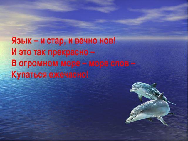 Язык – и стар, и вечно нов! И это так прекрасно – В огромном море – море слов...