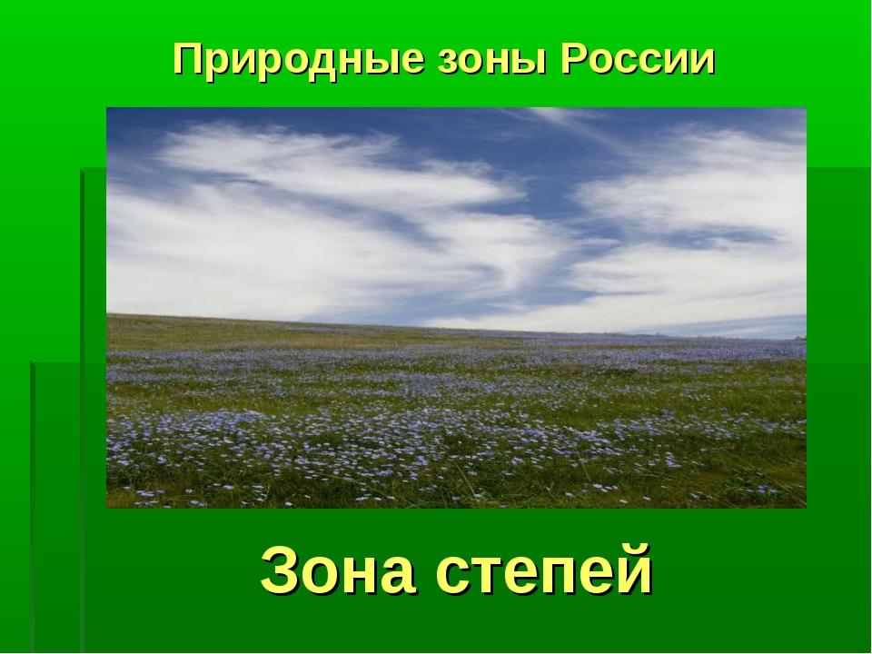 Зона степей Природные зоны России