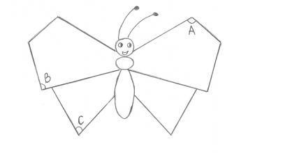 бабочка угольная