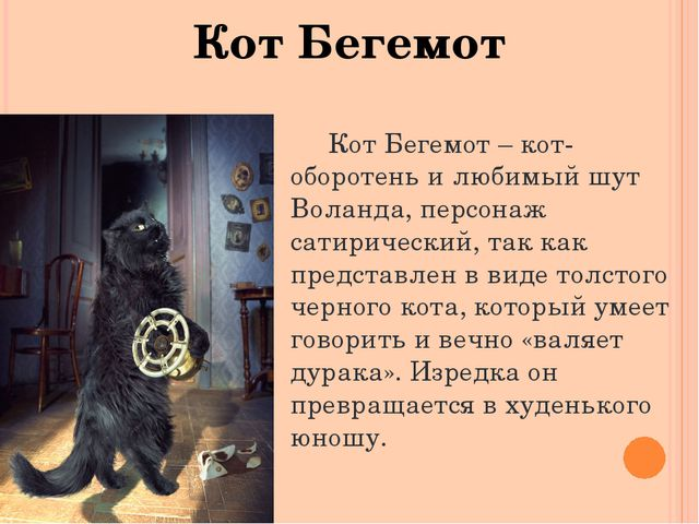 Кот Бегемот Кот Бегемот – кот-оборотень и любимый шут Воланда, персонаж сатир...