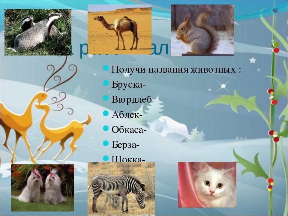 Слова рассыпались. Получи названия животных : Бруска- Вюрдлеб Аблек- Обкаса-...