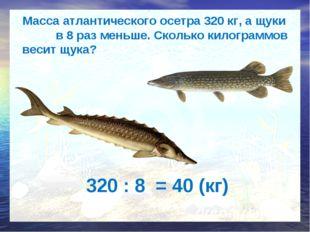 Масса атлантического осетра 320 кг, а щуки в 8 раз меньше. Сколько килограмм