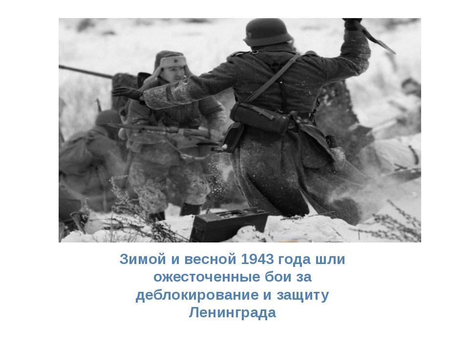 Зимой и весной 1943 года шли ожесточенные бои за деблокирование и защиту Лени...