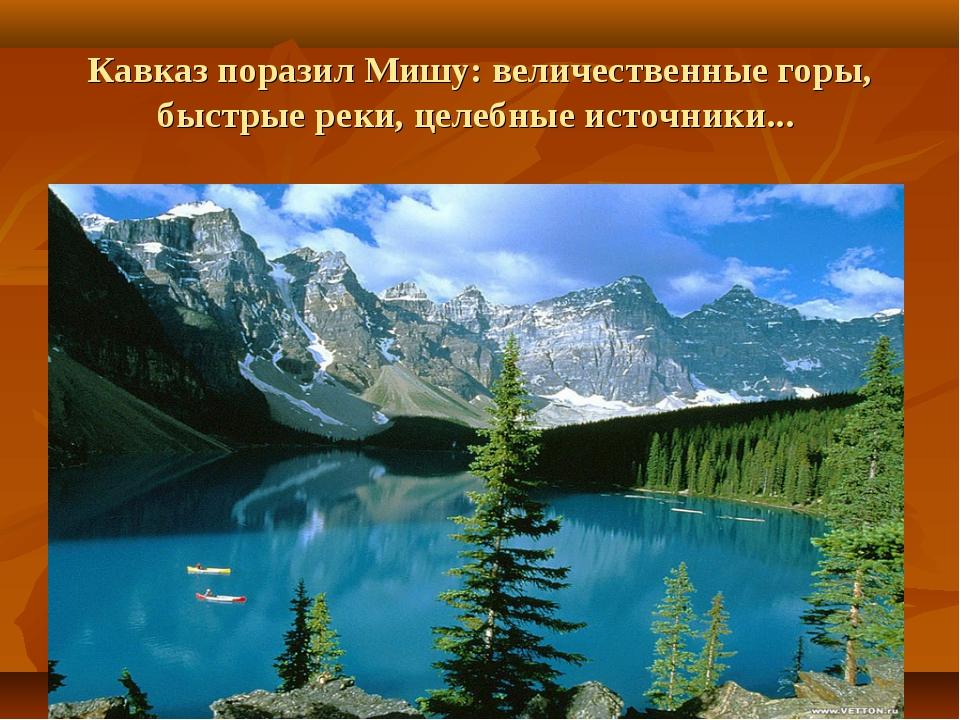 Кавказ поразил Мишу: величественные горы, быстрые реки, целебные источники...