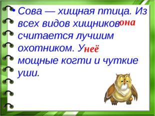 Сова — хищная птица. Из всех видов хищников считается лучшим охотником. У мощ