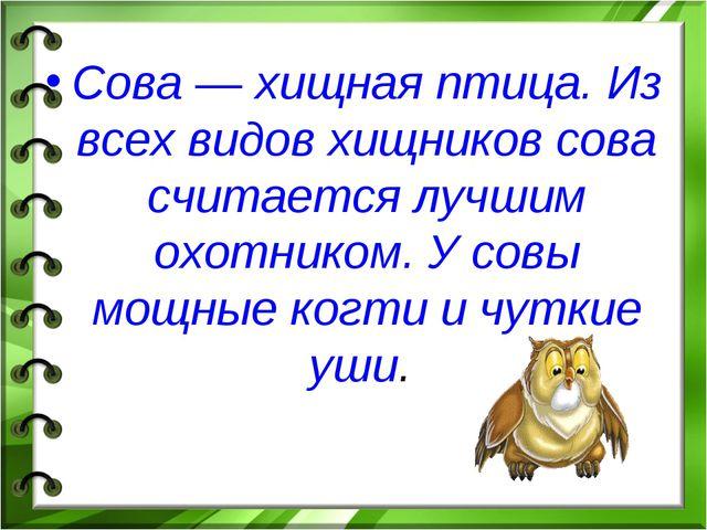 Сова — хищная птица. Из всех видов хищников сова считается лучшим охотником....