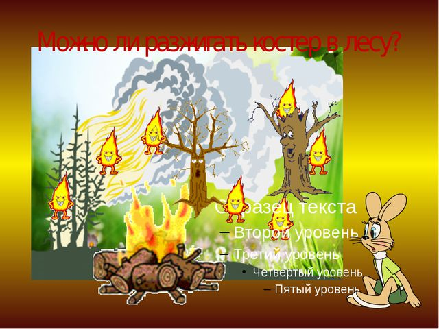 Можно ли разжигать костер в лесу?