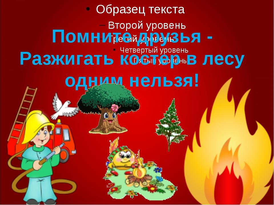 Помните друзья - Разжигать костер в лесу одним нельзя!