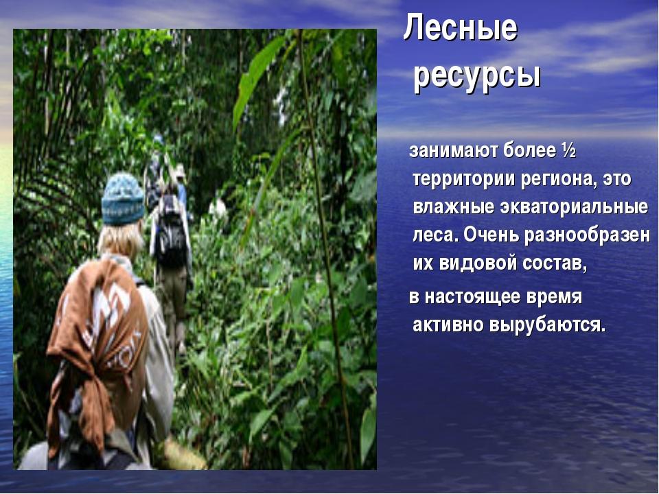 Лесные ресурсы занимают более ½ территории региона, это влажные экваториальн...