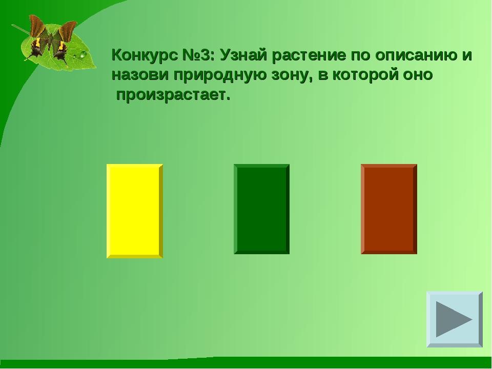 Конкурс №3: Узнай растение по описанию и назови природную зону, в которой оно...