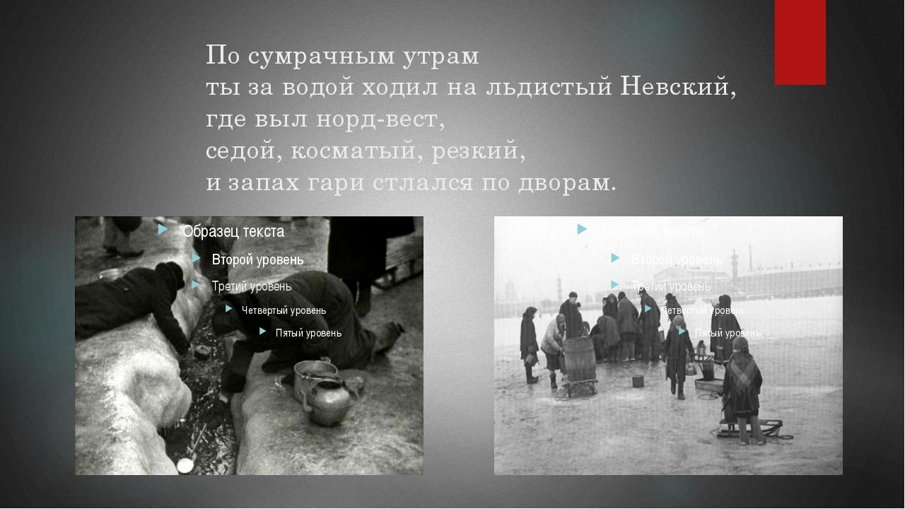 По сумрачным утрам ты за водой ходил на льдистый Невский, где выл норд-вест,...