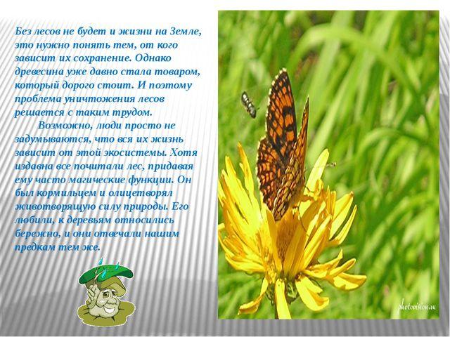 Без лесов не будет и жизни на Земле, это нужно понять тем, от кого зависит их...