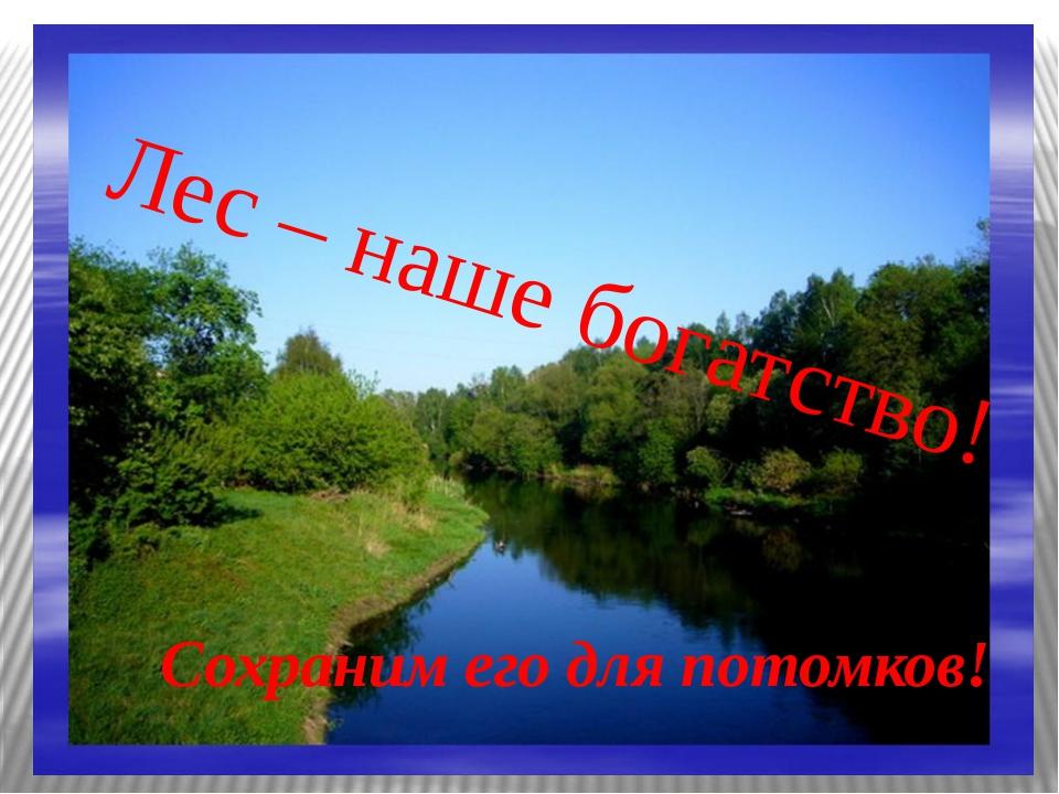 Лес – наше богатство! Сохраним его для потомков!