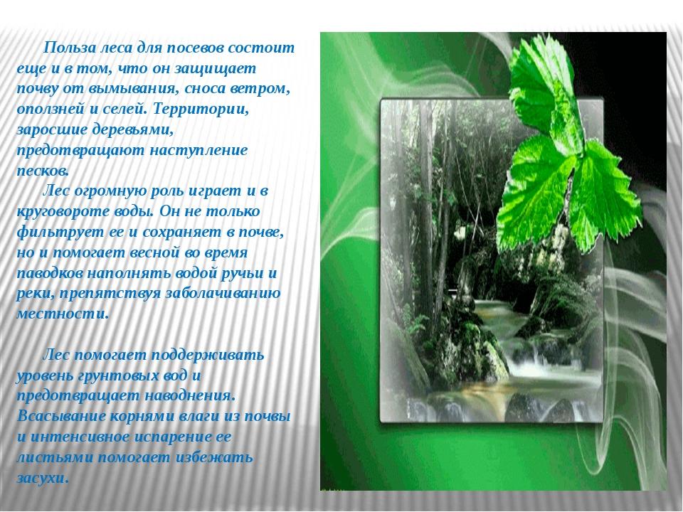 Польза леса для посевов состоит еще и в том, что он защищает почву от вымыва...