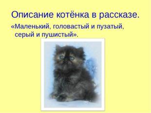 Описание котёнка в рассказе. «Маленький, головастый и пузатый, серый и пушист