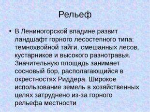Рельеф В Лениногорской впадине развит ландшафт горного лесостепного типа: тем