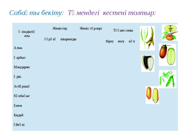 Сабақты бекіту: Төмендегі кестені толтыр: Өсімдіктің аты Жемістер Жемістүрле...