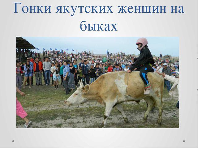 Гонки якутских женщин на быках