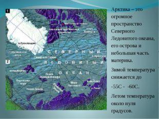 Арктика – это огромное пространство Северного Ледовитого океана, его острова