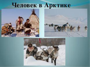Человек в Арктике
